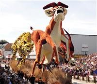 Dutch Dahlias on Parade