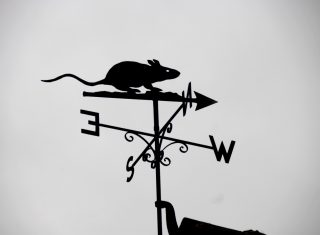 Eyam Museum, Derbyshire - Weather-vane