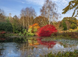 RHS Garden Rosemoor, Devon - Autumn colour by the lake © RHS, Clive Nichols
