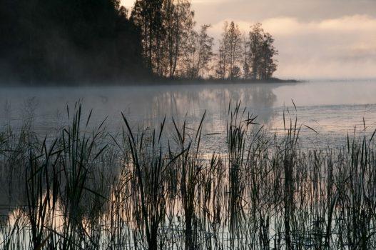 Finland - Heinola Nature Summer night © VisitLahti