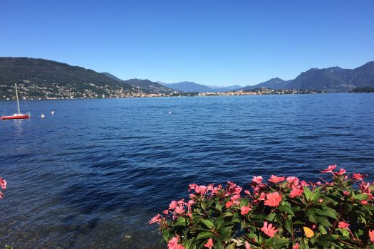 Camellias Aosta Baveno, Lake Maggoire - Italy. European travel