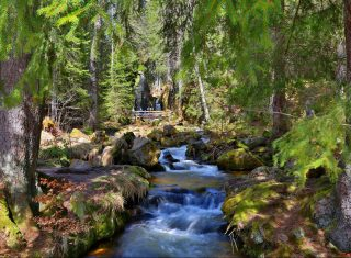 Black Forest group tour, South West Germany for groups