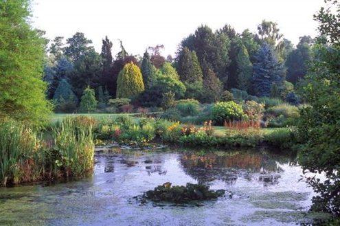 Bressingham Steam & Gardens, Norfolk - Foggy Bottom (NCN)