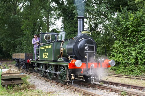 Bressingham Steam & Gardens, Norfolk - Martello driver experience (NCN)