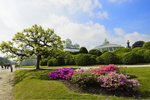 Belgium, Brussels, Laeken, Royal greenhouses of Laeken, Serres Royales De Laeken, Gardens, group travel, group tour ©WBT - J.P.Remy