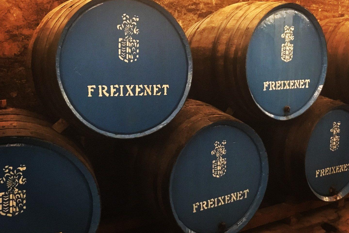 Cavas Freixenet, Catalonia - Cava Wine Barrels - Wine Tour