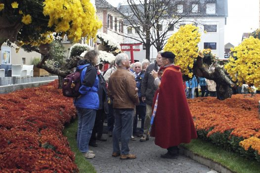 Show round by a Guide at Chrysanthemum Festival in Lahr, Germany