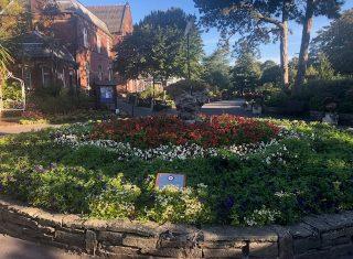 Churchtown botanic gardens - Katharine (NCN)