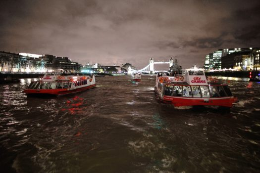 City Cruises fleet at night