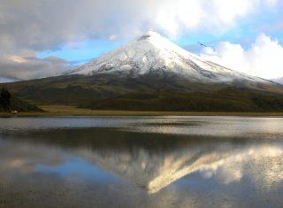 Cotopaxi Languna de Limpiopungo al fondo volcan Cotopaxi, Equador