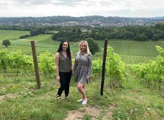 Denbies Wine Estate - Surrey Fam Trip - In the vineyards