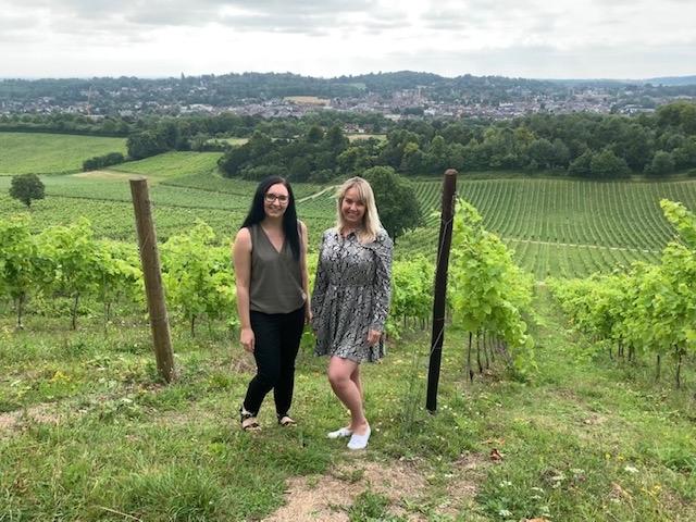 Denbies Wine Estate - Surrey Fam Trip - In the vineyards