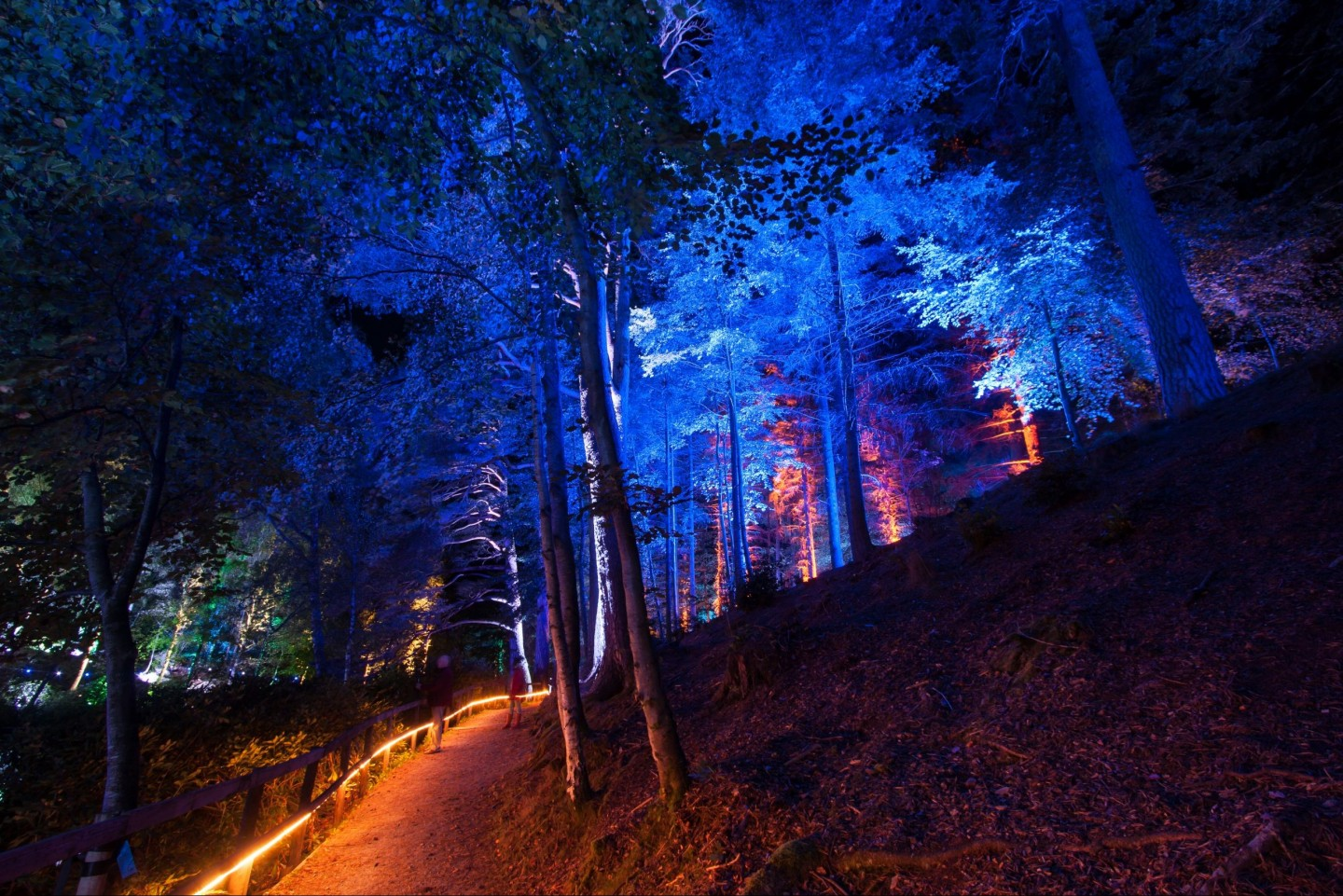 Pitlochry tour, Enchanted Forest © Graham Smith, group tour to Pitlochry