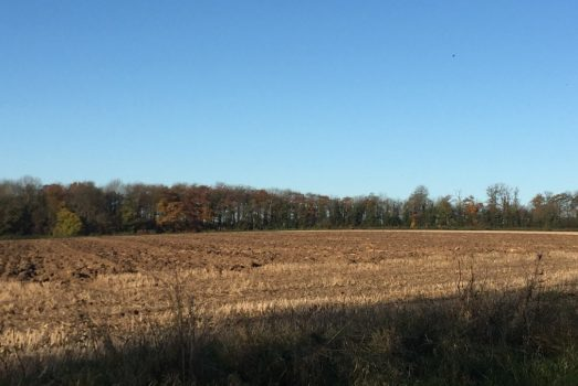 Farm, farming, agriculture SIMA, agritechnica Ally-NCN