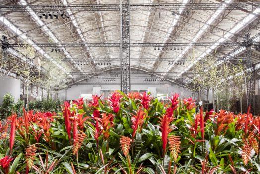 Floralies, Ghent, Belgium - Floralienhal-3 © Karin Borghouts