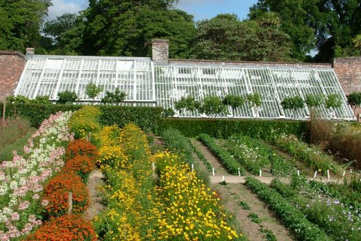Flower Garden Vinery ©Helicon Gardens Ltd / Lorna Tremayne