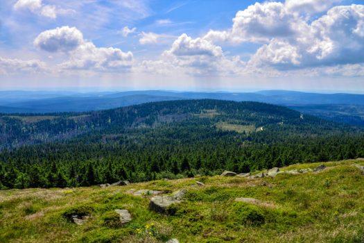 Germany - Harz - Brocken © PT Wilding