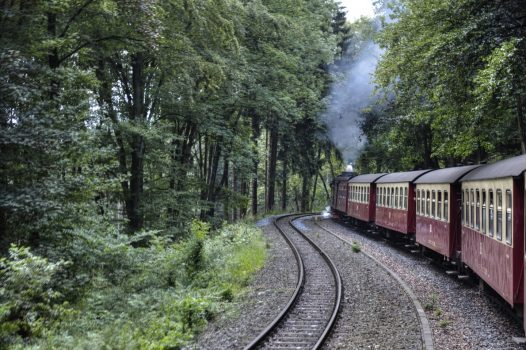 Germany - Harz - Harzer Schmalspurbahnen © PT Wilding