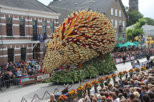 Dutch Dahlias on Parade, Zundert, Holland