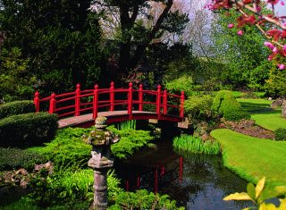 Irish National Stud & Gardens, Co Kildare, Ireland - Japanese Gardens