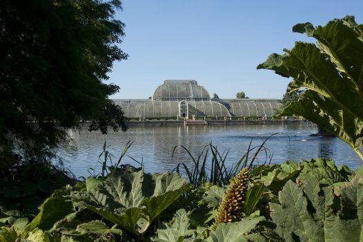 Kew Gardens, London - Palm House©citycruises.com
