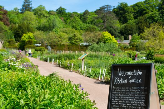 Knightshayes Kitchen Garden