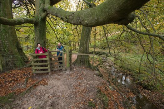 Nicky Nook Walk, Forest of Bowland ©image supplied by visitlancashire.com