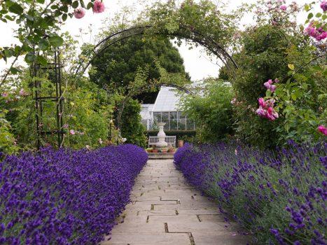 Chapel Manor Gardens