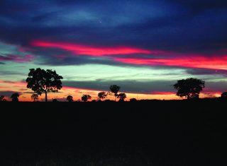 Pantanal Sunset, Brazil NCN