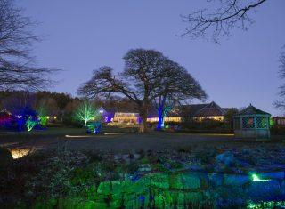 RHS Garden Harlow Carr, Harrogate, North Yorkshire - Glow Illuminations © RHS, sirastudio