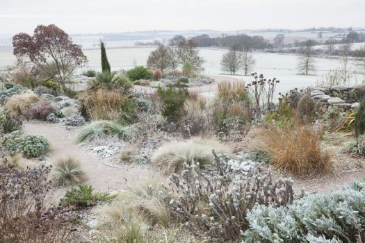 RHS Garden Hyde Hall, Chelmsford, Essex - The Dry Gardenin winter © RHS, Lee Beel