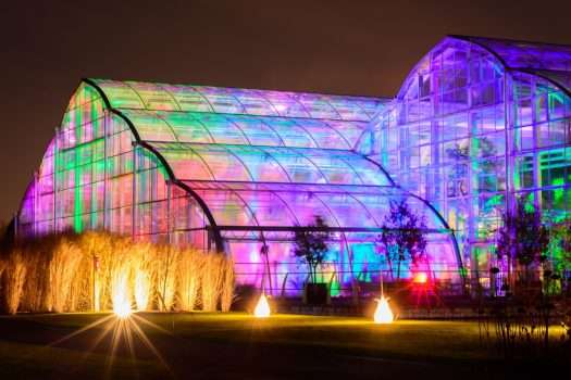 RHS Gardens at night