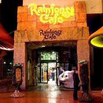 Rainforest Cafe ©Disney