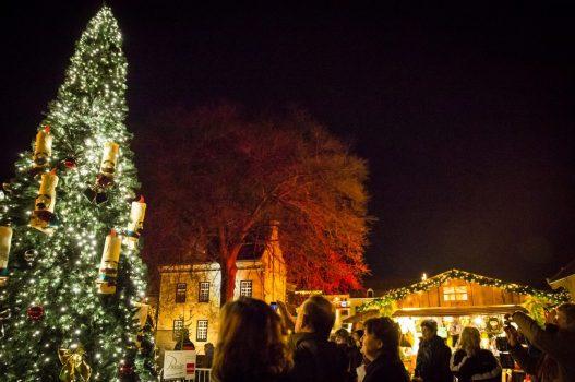 Santas Village tree Valkenburg-ncn