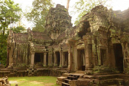 Cambodia, Angkor Wat National Park, Ta Phrom, NCN
