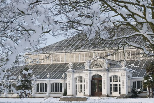 Temperate house in the snow © Kew Gardens