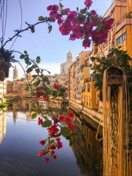 Spain, Cantabria, Girona, Temps de Flors, flowers, group tour, group travel © Girona City Council - Laia Masip