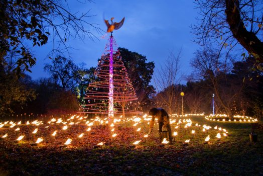 The Fire Garden at Kew Gardens ©Jeff Eden, RBG Kew