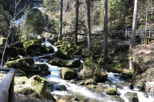 Germany, Triberg Waterfalls, Black Forest, Group travel,