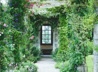 West Dean Gardens Edwardian Pergola © Vicki IstedWest Dean Gardens