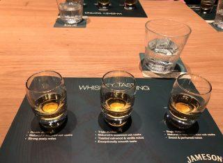 Whiskey tasting, Jamesons Distillery, Midleton, Ireland