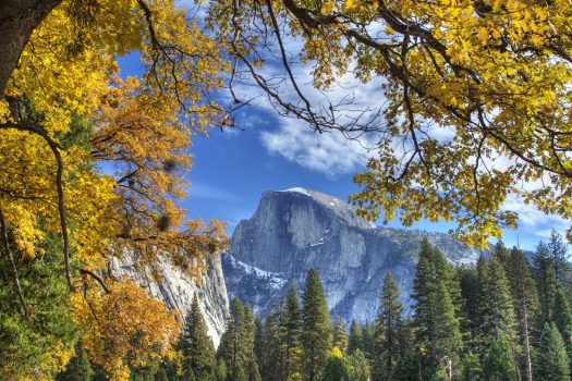 USA, United States of America, California, Yosemite