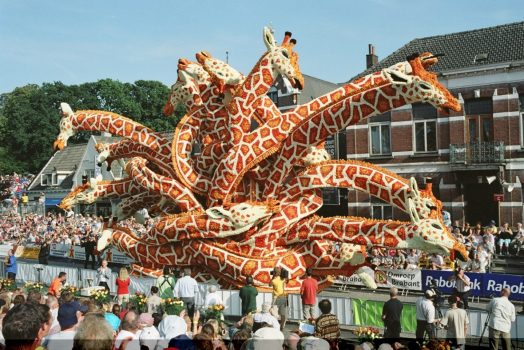 Zundert Flower Parade - Dutch Dahlias