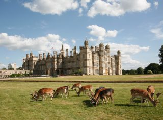 Lincolnshire tour Burghley house stamford oakham Barnsdale House and Deers © Barnsdale Gardens