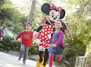 Disneyland Parks for Groups